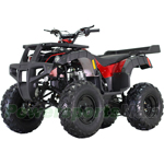 "ATV-T043 250 Utility Full Size ATV with Manual Transmission w/Reverse, Big 23""/22"" Tires!"
