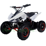 "Taotao E1-350 350W Electric Kids ATV with Brushless Electric Motor and Adjustable Speeds! 6"" Tires! High-Tensile Steel Frame!"