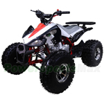 "ATV-T049 125cc ATV with Automatic Transmission w/Reverse! Big 19""/18"" Alloy Rims Wheels!"
