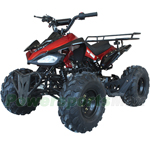 "ATV-W024 125cc Sports ATV with Automatic Transmission w/Reverse, Remote Control! Big 19""/18""Tires!"