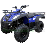 "ATV-W002 250cc Utility ATV with 5-speed Semi-Automatic Transmission w/Reverse, Shaft Drive! Big 23""/22"" Tires!"