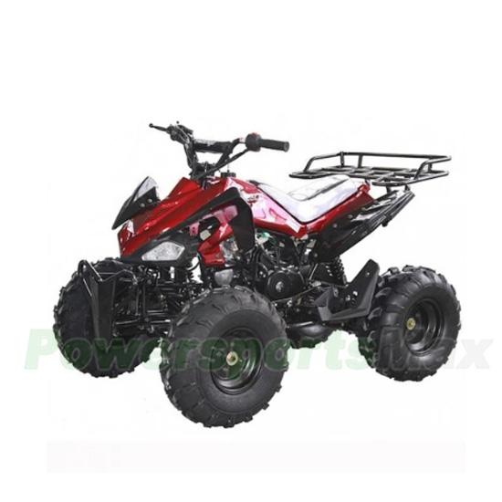 ATV-W010 125cc ATV with Fully-Auto w/ Reverse, Chain Driven