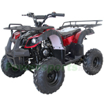 "ATV-W020 125cc Utility ATV with Automatic Transmission w/Reverse, Remote Control! Big 16"" Tires! Big LED Headlights!"