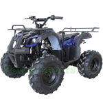 "RPS TK125ATV-8 125cc Kodiar Utility ATV with Automatic Transmission w/Reverse, Remote Control! Big 19""/18""Tires! Big LED Headlights!"