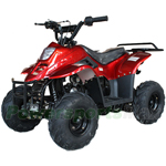 Fully Assembled and Tested! ATV-W027 110cc Kids ATV with Automatic Transmission, with Remote Control! Rear Rack!