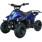 110cc Kids ATV with Automatic Transmission, with Remote Control! Rear Rack!