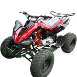 "ATV-W028 200cc Sports ATV with Automatic Transmission with Reverse, Big 23""/22"" Tires!"