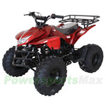 "ATV-X19 X-PRO 125cc Utility ATV with Automatic Transmission w/Reverse, Remote Control! Big 19""/18""Tires! Front LED Light!"