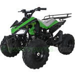 "ATV-X17 X-PRO 125cc Utility ATV with Automatic Transmission w/Reverse, Remote Control! Big 19""/18""Tires! Big LED Light!"