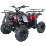 "ATV-X20 125cc ATV with Automatic Transmission w/Reverse, Foot Brake, Remote Control! Big 16""Tires! Big LED Lights!"