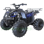 "ATV-X21 125cc ATV with Automatic Transmission w/Reverse, Foot Brake, Remote Control! Big 19""/18""Tires! Big LED Lights!"