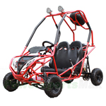 GK-C09 110cc Go Kart with Automatic Transmission w/Reverse, Electric Start, Roof Lights! With Free Spare Tire!