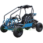 GK-F031 125cc Go Kart with Automatic Transmission w/Reverse! Remote Control! LED Headlights and LED Turn Signal Indicator!