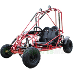 GK-F033 X-PRO 125cc Go Kart with Automatic Transmission w/Reverse, Larger than Kid Size! More room for growth!