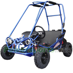 Free Shipping! TrailMaster Mini XRS+ 163cc Kid Size Go Kart with Automatic Transmission, 5.5 HP General Purpose Engine, High Quality!