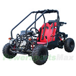 GK-T008 110cc Go Kart with Fully Automatic Transmission w/Reverse, Hydraulic Disc, Chain Drive!