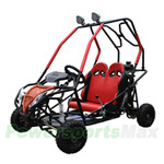 GK-X09 110cc Go Kart with Automatic Transmission w/Reverse, Remote Control! Electric Start, Roof Lights!