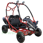 GK-X11 125cc Go Kart with Automatic Transmission w/Reverse, Remote Control! Hand & Foot Brake! Roof Lights!
