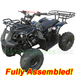 "ATV-T013-R879 125cc ATV with Automatic Transmission w/Reverse, Foot Brake, Remote Control! Big 16"" Tires! Refurbished, Fully Assembled!"