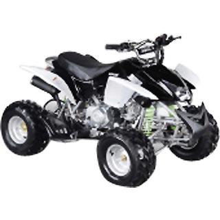 BMS ATV 110cc-Mini S