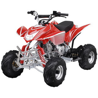 TaoTao ATVs Parts