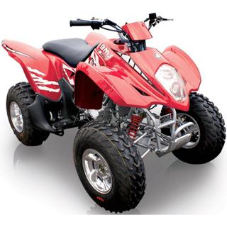 BMS ATV 250cc Sports